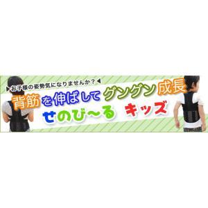 せのび〜る キッズ ジュニアサイズ(身長140〜155cm) 日本製 即納|az-shop|04