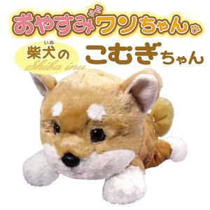 おやすみワンちゃん 柴犬のこむぎちゃん |az-shop