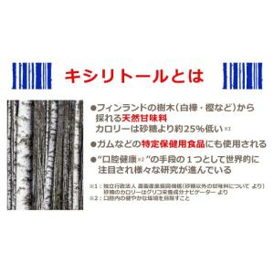 JNC フィンランドキシリトール  60g ※発送まで2日〜3日お時間をいただきます |az-shop|03
