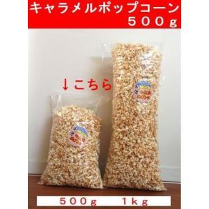 笑撃 キャラメルポップコーン500g|azechi