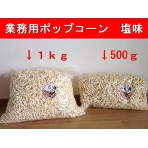 業務用 笑撃 ポップコーン 塩味 500g|azechi