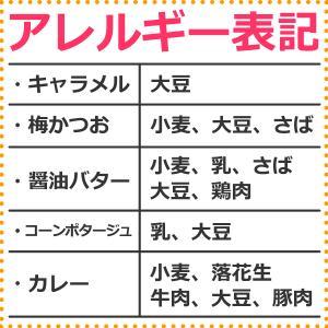 業務用 ポップコーン塩味 1kg 約50人分 azechi 12