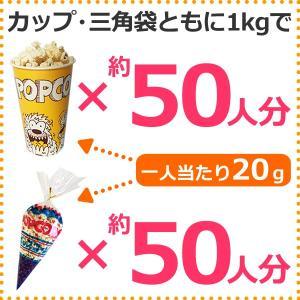 業務用 ポップコーン塩味 1kg 約50人分 azechi 04