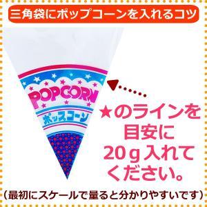 業務用 ポップコーン塩味 1kg 約50人分 azechi 05