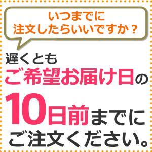 業務用 ポップコーン塩味 1kg 約50人分 azechi 07