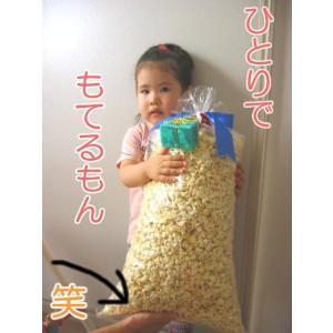 業務用 ポップコーン シュガー味 500g|azechi