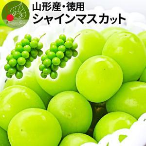 山形県産 お徳用 大粒 シャインマスカット  2房 約1kg...