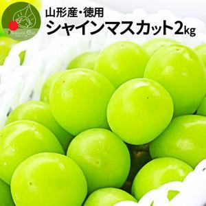 山形県産 お徳用 大粒 シャインマスカット  4房 約2kg...