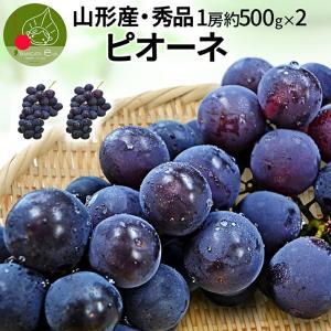 山形県産 お徳用 大粒ピオーネ 2房 約1kg (1房約50...