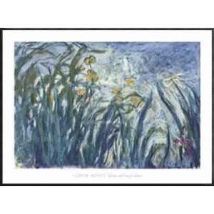 Yellow and Purple Irises 1924 25(クロード モネ) 額装品 アルミ製ハイグレードフレーム|aziz