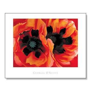 Oriental Poppies|aziz