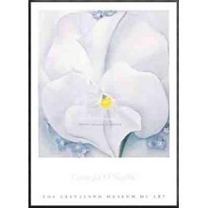 White Pansy(ジョージア オキーフ) 額装品 アルミ製ハイグレードフレーム|aziz