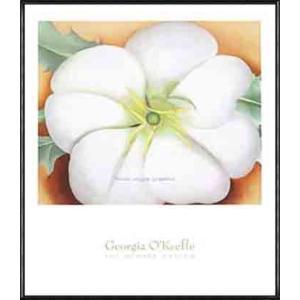 White Flower on Red Earth No. 1(ジョージア オキーフ) 額装品 アルミ製ハイグレードフレーム|aziz