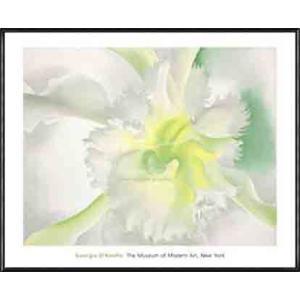 An Orchid(ジョージア オキーフ) 額装品 アルミ製ハイグレードフレーム|aziz