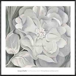 The White Calico Flower  1931(ジョージア オキーフ) 額装品 アルミ製ハイグレードフレーム|aziz
