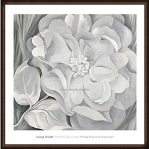The White Calico Flower  1931(ジョージア オキーフ) 額装品 ウッドハイグレードフレーム|aziz
