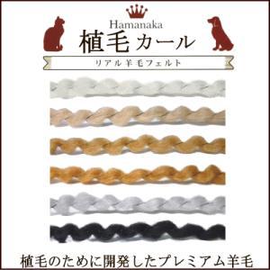 ハマナカ リアル羊毛フェルト 植毛カール 30g/手芸用品 手作り ハンドメイド クラフト用品|aznetcc