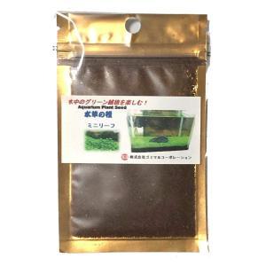 水中のグリーン絨毯 水草の種 ミニリーフ azsys