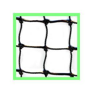 18本25ミリネット(ブラック) 有結節網|azuma-net
