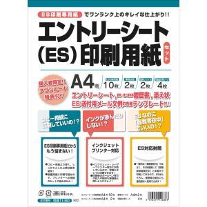 日本法令 エントリーシート(ES)印刷用紙セット 労務11-80