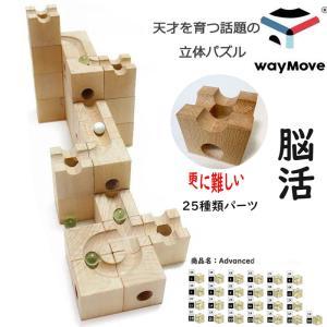 【HUIZorbit社standard】キューブ  木の立体...