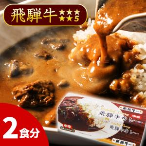 飛騨牛カレー ごろっと飛騨牛カレー 5等級使用 中辛 2食分 飛騨山味屋 ビーフカレー