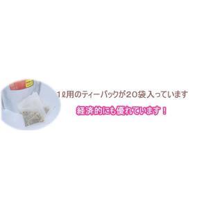 ローズヒップティーを10倍美味しく フルーツハーブウォーター サザン 水出しハーブティ ほんのり甘味|azuselectshop|04