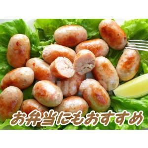 生ソーセージ 大分県の川津食品の柚子胡椒入り 500g 16本入 リングイッサ 冷凍|azuselectshop|04