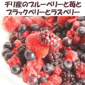 ミックスベリー 冷凍 500g トロピカルマリア 苺・ブルーベリー・ブラックベリー・ラズベリー azuselectshop 02