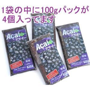 アサイー 冷凍ピューレ 100g×4パック×15袋 無糖 フルッタフルッタ|azuselectshop|02