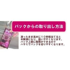 アサイースムージーミックス ガラナ入り冷凍ピューレ 100g×4パック×15袋 アサイーエナジー フルッタフルッタ|azuselectshop|04