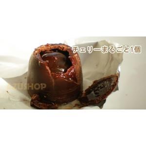 チェリー リキュール入りビターチョコ 袋入り 140g Cherry&Liqueur Laica イタリア|azuselectshop|02