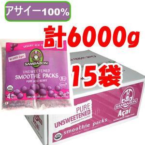 アサイーピューレ 無糖 冷凍 100g×4パック×15袋 サンバゾン|azuselectshop