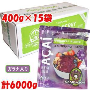 アサイー 冷凍ピューレ ガラナシロップ入り サンバゾン100g×4パック×15袋|azuselectshop