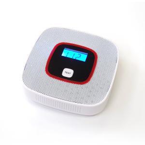 一酸化炭素 チェッカー 警報機 壁掛け 乾電池式 CO 大音量 80db 電気化学式センサー搭載 アラーム