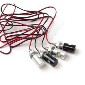 LEDナンバー灯 M6ボルト (シルバー/ブラック) メッキナンバーボルト12V汎用 (ネコポス送料無料)|azzurri