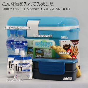 クーラーボックス小型  フォレスクルー #13 お弁当など保冷するのちょうどいいサイズのクーラーボックス|b-bselect|05