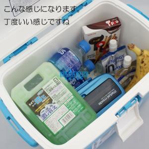 クーラーボックス小型  フォレスクルー #13 お弁当など保冷するのちょうどいいサイズのクーラーボックス|b-bselect|06