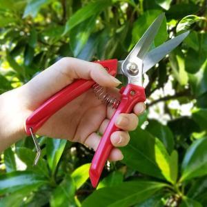 ステンレス万能ばさみ LF-2 剪定ばさみ,剪定鋏,剪定ハサミ,剪定バサミ