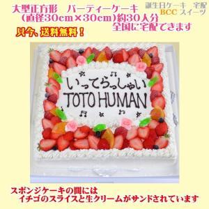 バースデーケーキNo,1752/大きいケーキ正方形30cm/誕生日ケーキ/パーティーケーキ b-c-c