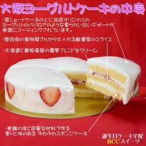 誕生日ケーキ バースデーケーキ メッセージ 大阪ヨーグルトケーキ5号 15cm|b-c-c|02