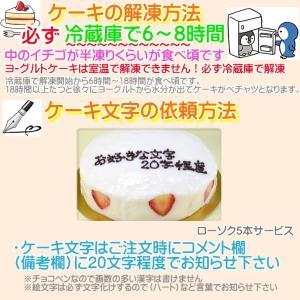 誕生日ケーキ バースデーケーキ メッセージ 大阪ヨーグルトケーキ5号 15cm|b-c-c|03