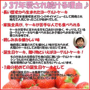 誕生日ケーキ バースデーケーキ メッセージ 大阪ヨーグルトケーキ5号 15cm|b-c-c|04