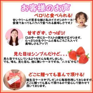 誕生日ケーキ バースデーケーキ メッセージ 大阪ヨーグルトケーキ5号 15cm|b-c-c|05