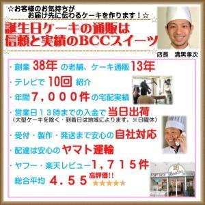 誕生日ケーキ バースデーケーキ メッセージ 大阪ヨーグルトケーキ5号 15cm|b-c-c|06