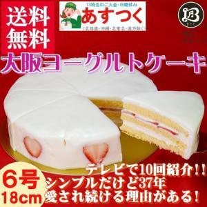 大阪ヨーグルトケーキ・ノーマル6号 18cm  大阪ご当地スイーツ|b-c-c
