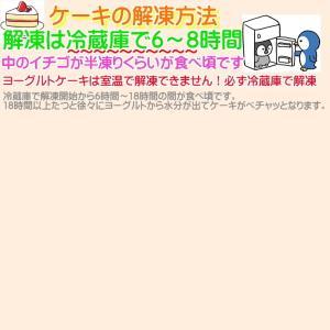 大阪ヨーグルトケーキ・ノーマル6号 18cm  大阪ご当地スイーツ|b-c-c|03