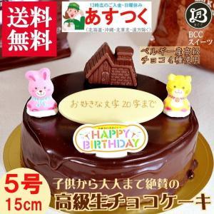 誕生日ケーキ バースデーケーキ チョコハウス飾り付 BCC生チョコザッハトルテ5号チョコケーキ 15cm