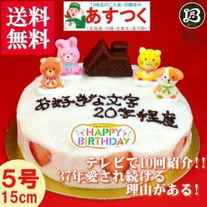 誕生日ケーキ バースデーケーキ チョコハウス飾り付 大阪ヨーグルトケーキ5号 15cm|b-c-c