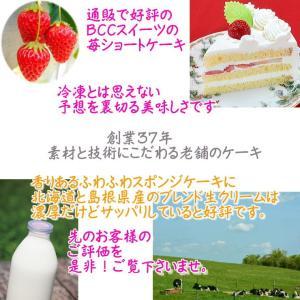 誕生日ケーキ プレート付リース生クリームケーキ5号バースデーケーキ b-c-c 03